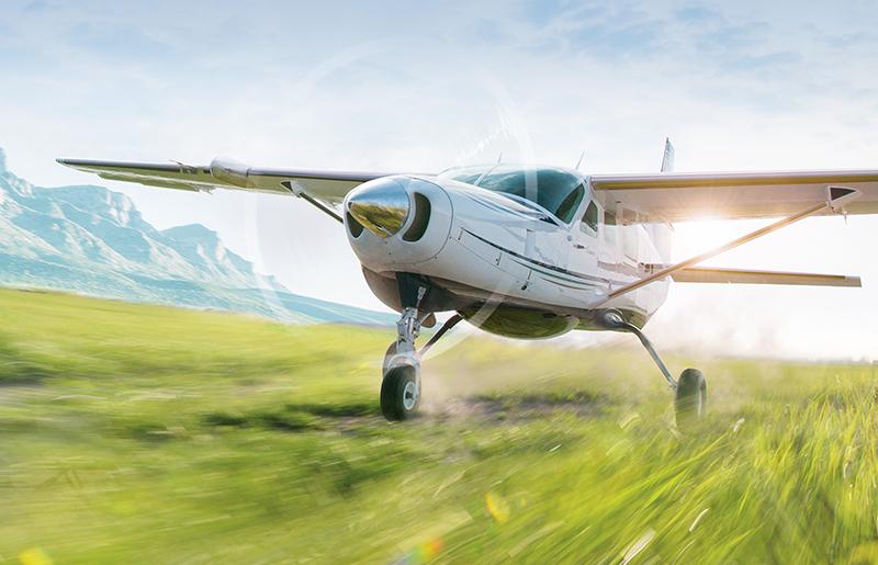 Cessna on grass
